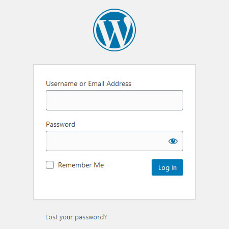 WordPress login looks like this